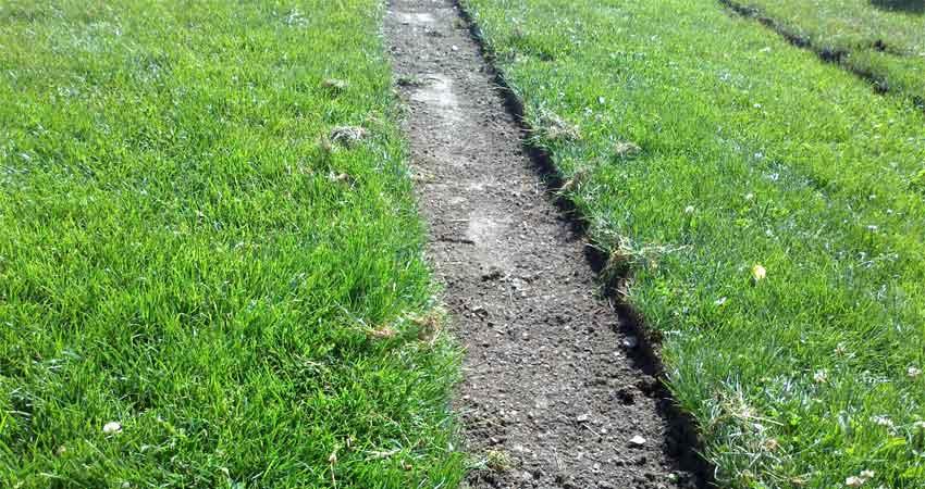 Slupování trávníku