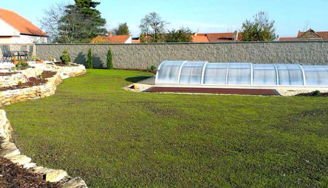 Čerstvě založený trávník výsevem. Stáří cca 14 dnů.