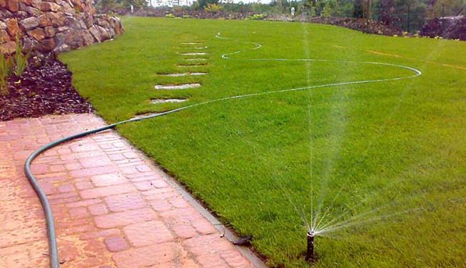 Kobercový trávník je položený asi 10 dnů. Některé stromy se ještě sází, proto ta hadice, která by v trávníku dlouho ležet neměla.