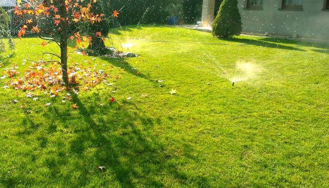 Ještě na podzim je trávník pěkně zelený. Zazimování závlahy stlačeným vzduchem, pomocí kompresoru.