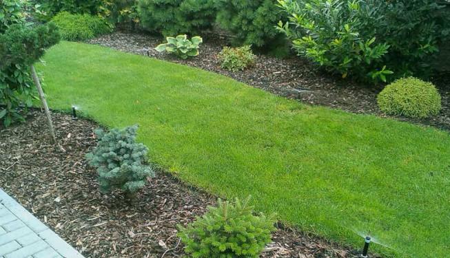 Zavlažování úzkých dlouhých pásů trávníku je na zahradách běžné. Rozprašovací postřikovače v trojúhelníkovém sponu.