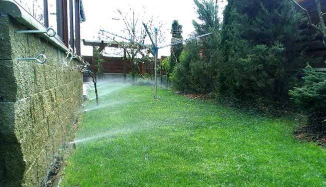 Rozprašovací postřikovače Pro Spray, 3 týdny po instalaci do trávníku. Drážka po půdní fréze už není vidět.
