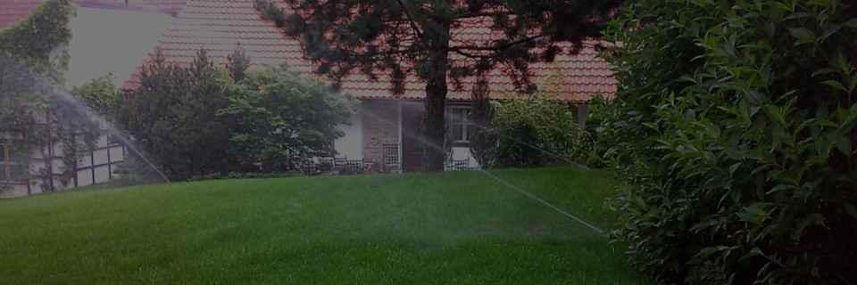 Několik dnů po instalaci se trávník zazelená
